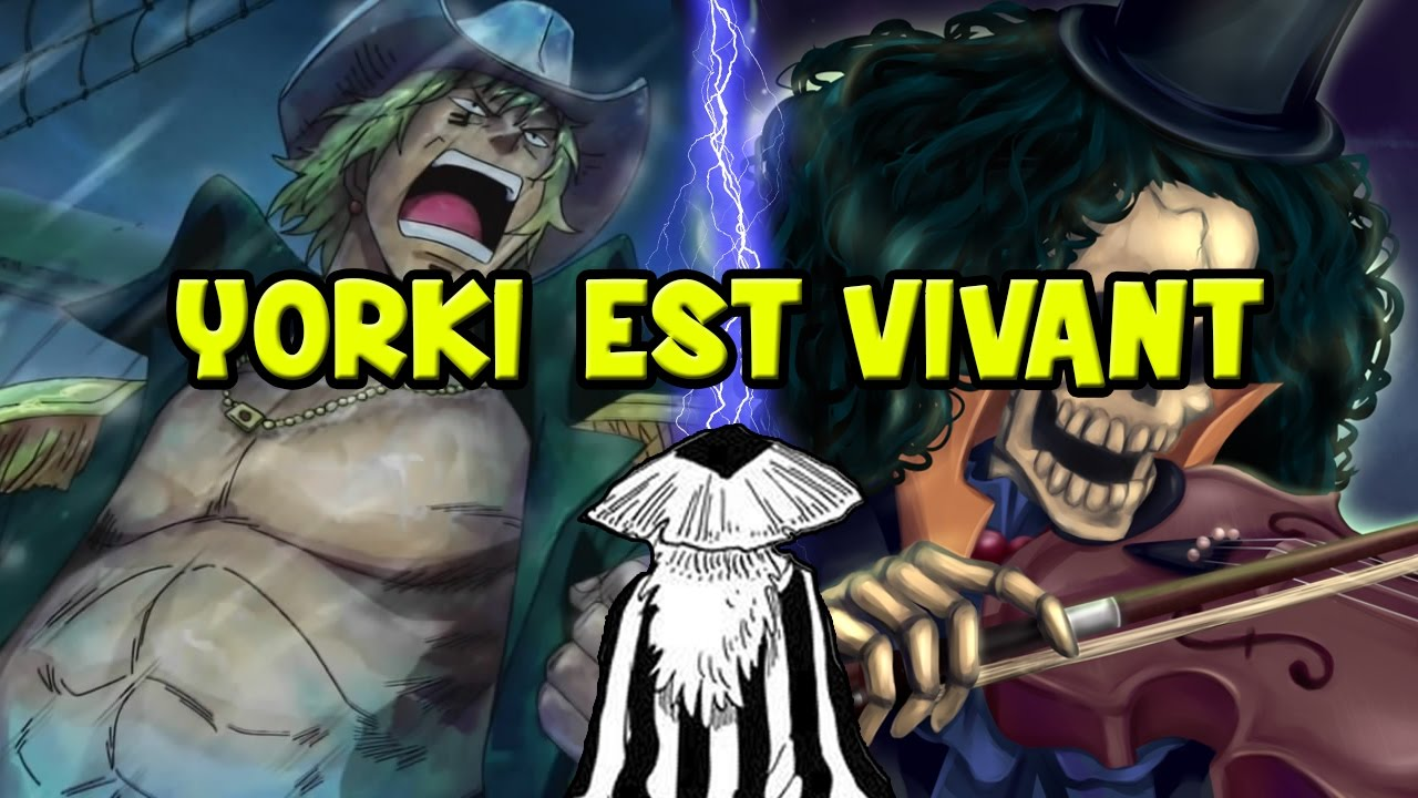 yorkie one piece yorki est vivant one piece th 201 orie youtube 7794