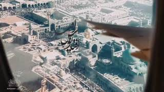 الإمام الرضا (ع) أول من يأتي زواره في القبر ليلة الوحشة  |  المرجع الكبير الشيخ الوحيد الخراساني