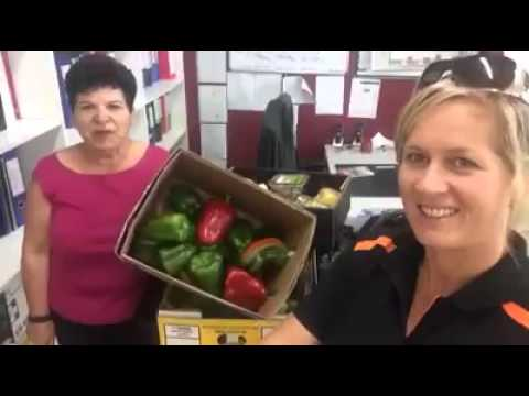 Sharing the food love with Berkeley Neighbourhood Centre