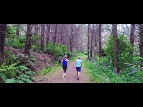 Walk up the Trig Walkway Dec 2017. Levin, Horowhenua, NZ.