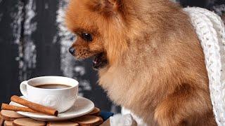 COFFEE BREAK W/ JN 10/14/21