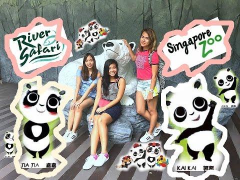 Singapore zoo & River Safari