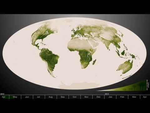 Green: Vegetation on Our Planet (Flat Earth) thumbnail
