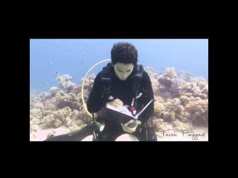 تعلم الدراسة تحت البحر مع كابتن طارق فياض how to study underwater