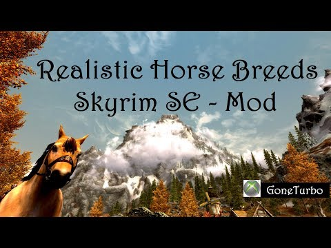 realistic horse breeds # 30
