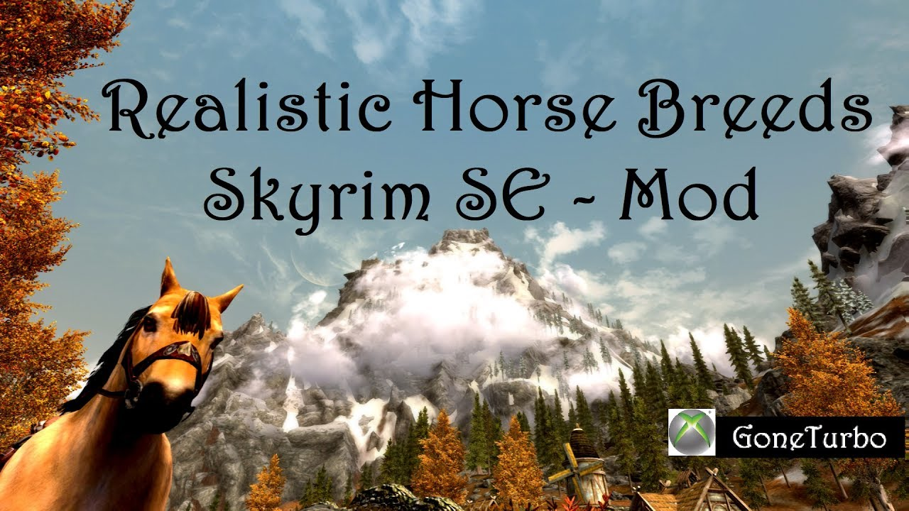 realistic horse breeds # 6