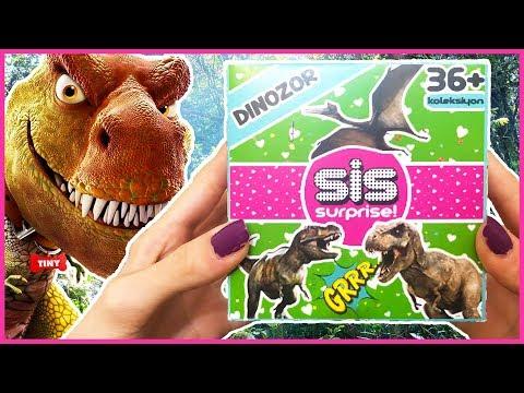 Sis Surprise Oyuncak Hazine Gerçek Para Buldum Sis Dinozor 10 Dila Kent