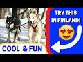 13 Things to Do in Finland in the Winter! (2018)