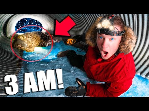 BABY BIGFOOT Found at 3AM Exploring ABANDONED Tunnel!! (Sasquatch)
