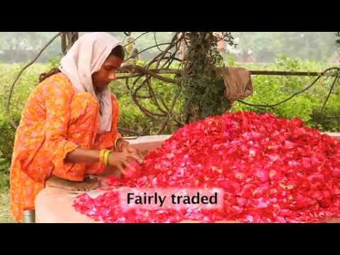 ORGANIC INDIA Herbal Supplements.mp4