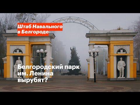 Белгородский парк им. Ленина вырубят?