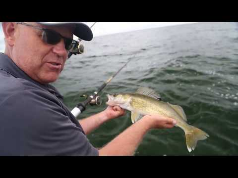 Walleye Heaven On Saginaw Bay