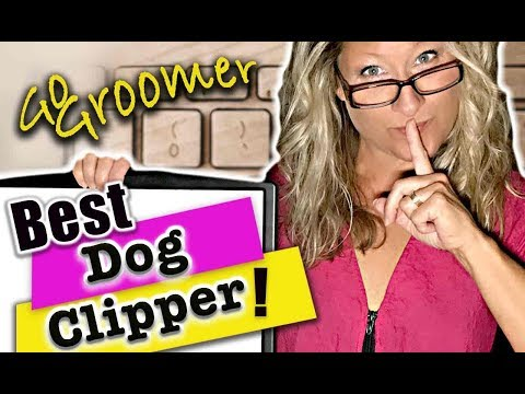 What is the Best Clipper for your Dog-Secrets you did not know
