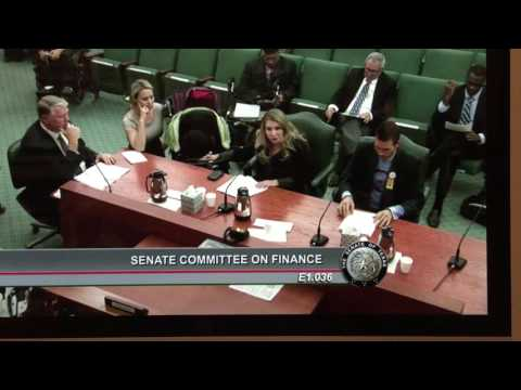 Texas Senate Committee on Finance Medicaid testimony Hannah Mehta