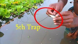 বিলে বড় মাছ ধরার জন্য ছোট মাছ দিয়ে ফাঁদ তৈরী | fishing trap using hook | fishing expert (part-35)