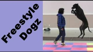 Pamela And Emily Vancouver Island Canine Freestyle Seminar