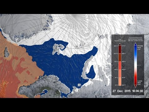 Warm Winter Cyclone Damaged Arctic Sea Ice Pack