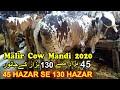 Rates in Malir Maweshi Mandi 2020  Karachi
