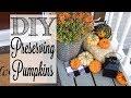 DIY Preserving Real Pumpkins   Make Your Pumpkins LAST!