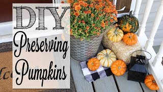 diy-preserving-real-pumpkins-make-your-pumpkins-last