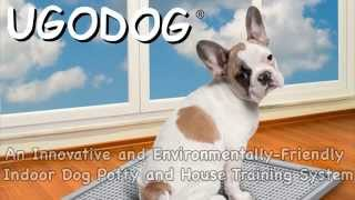 Dog Urine Collection Device - Ugodog- With Pawcheck Home-tests