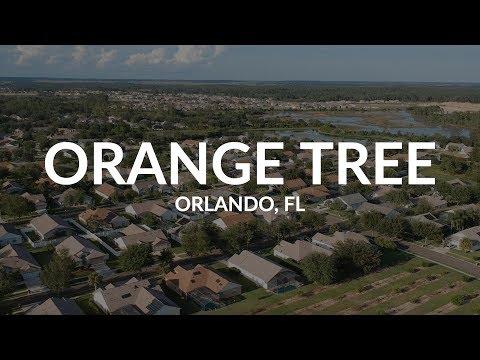Orange Tree   Orlando, FL