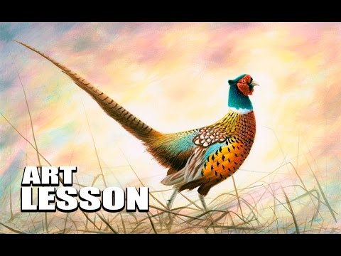 Acrylic Painting Lesson | Realistic Ring-neck Pheasant
