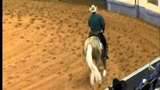 Shawn Flarida and Wimpys Little Colonel 2014 AQHA Junior Reining Reserve World Champion