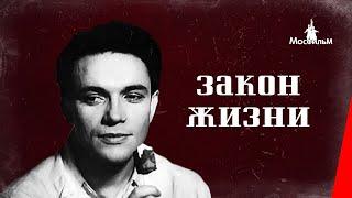 Закон жизни (1940) фильм