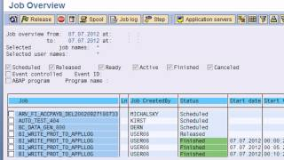 SAP BASIS Training Videos; Introduction to SAP System Administration (Basis)