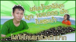 เล่นน้ำ ชาเขียว ไข่มุก สระเป่าลม โฟกัสโดนแกล้ง ไข่มุก 100,000 เม็ด