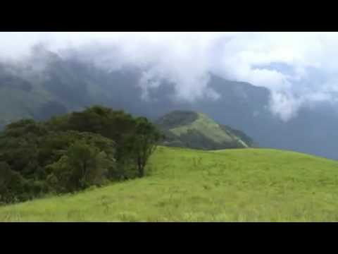 Yoga music- Relax it's your natural state of being  ^ – ^