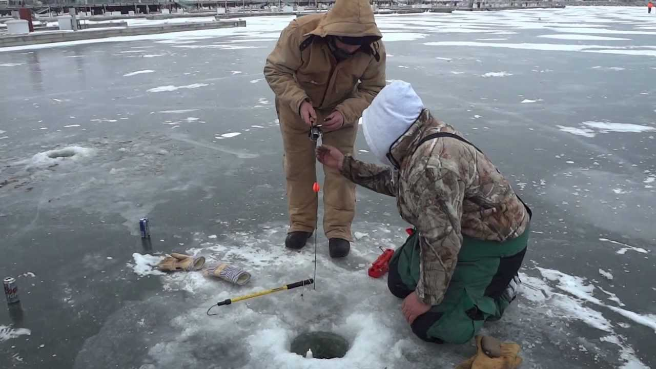 Ice fishing brown trout racine wi youtube for Wisconsin out of state fishing license