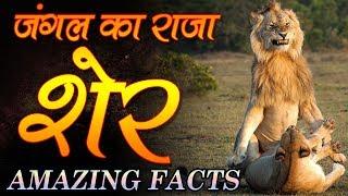 Amazing Facts About Lion In Hindi शेर के बारे में ये नहीं पता होगा | Adbhut Rahasya