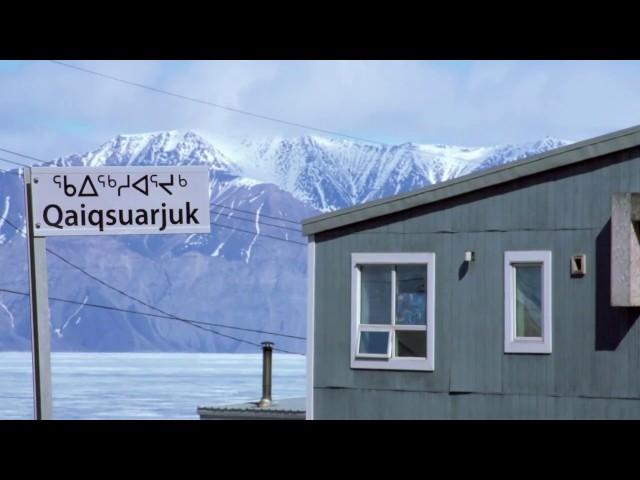 Narwhal and Polar Bear Safari | Arctic Kingdom