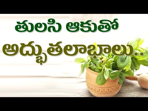 తులసి ఆకు అద్భుత లాభాలు సర్వరోగనివారిణి || Amazing Benefits Of Tulsi/Basil For Health