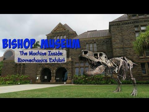 Bishop Museum | Oahu, Hawaii | VLOG #123