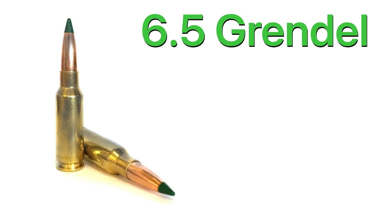 One Of The Best 5.56 Alternatives