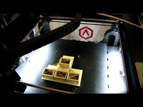 PolyMaker PolyWood Holzfilament Der Zweiten Generation- Raise3D N2 Test