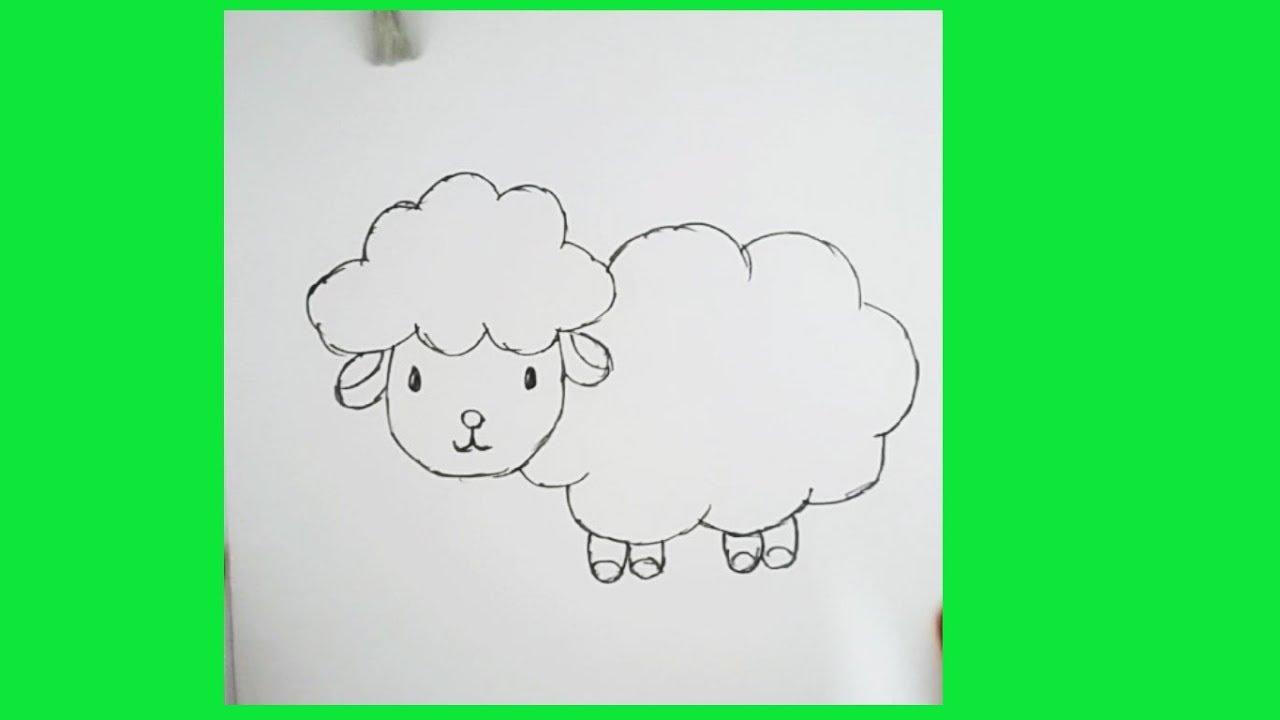 Koyun çizimi Kolay Hayvan çizimi Youtube