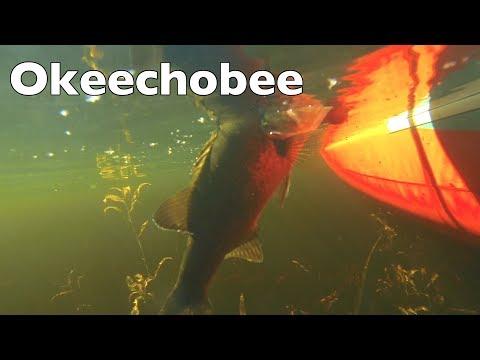 Kayak Fishing Report Lake Okeechobee Florida USA 2018 Bass Catching EP.386