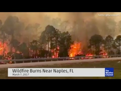 *Suspicious* Wildfire erupts in Naples Florida | Hot meteors hitting Earth?