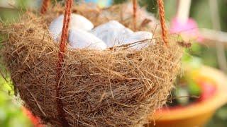 Balcony गार्डन के लिये बनाये 🐦प्राक्रतिक  (Bird Nest) ...How to make Bird Nest