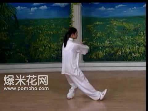 8-form Tai Chi Demo (Back) - YouTube
