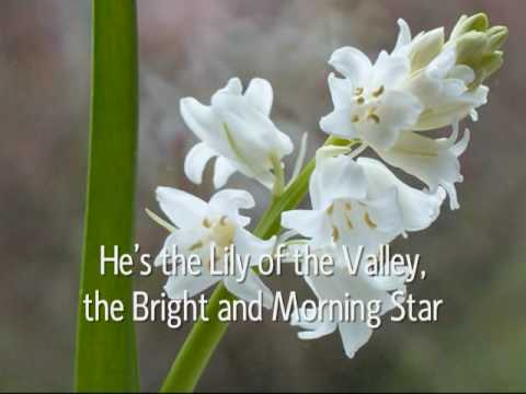 The Lily Of The Valley Youtube