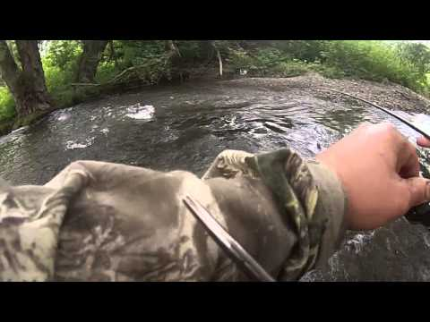 Brook Trout Fishing Cortland, NY