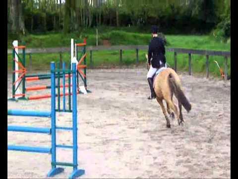 poney 4 vitesse