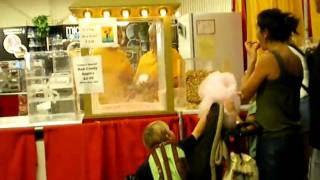 how to build a humongous cotton candy