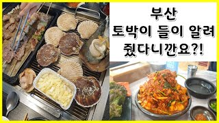 부산맛집(조개 무한리필)+부산근교 맛집(대구뽈찜, 꽃게…