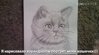 Моя кошка,нарисованная мной)